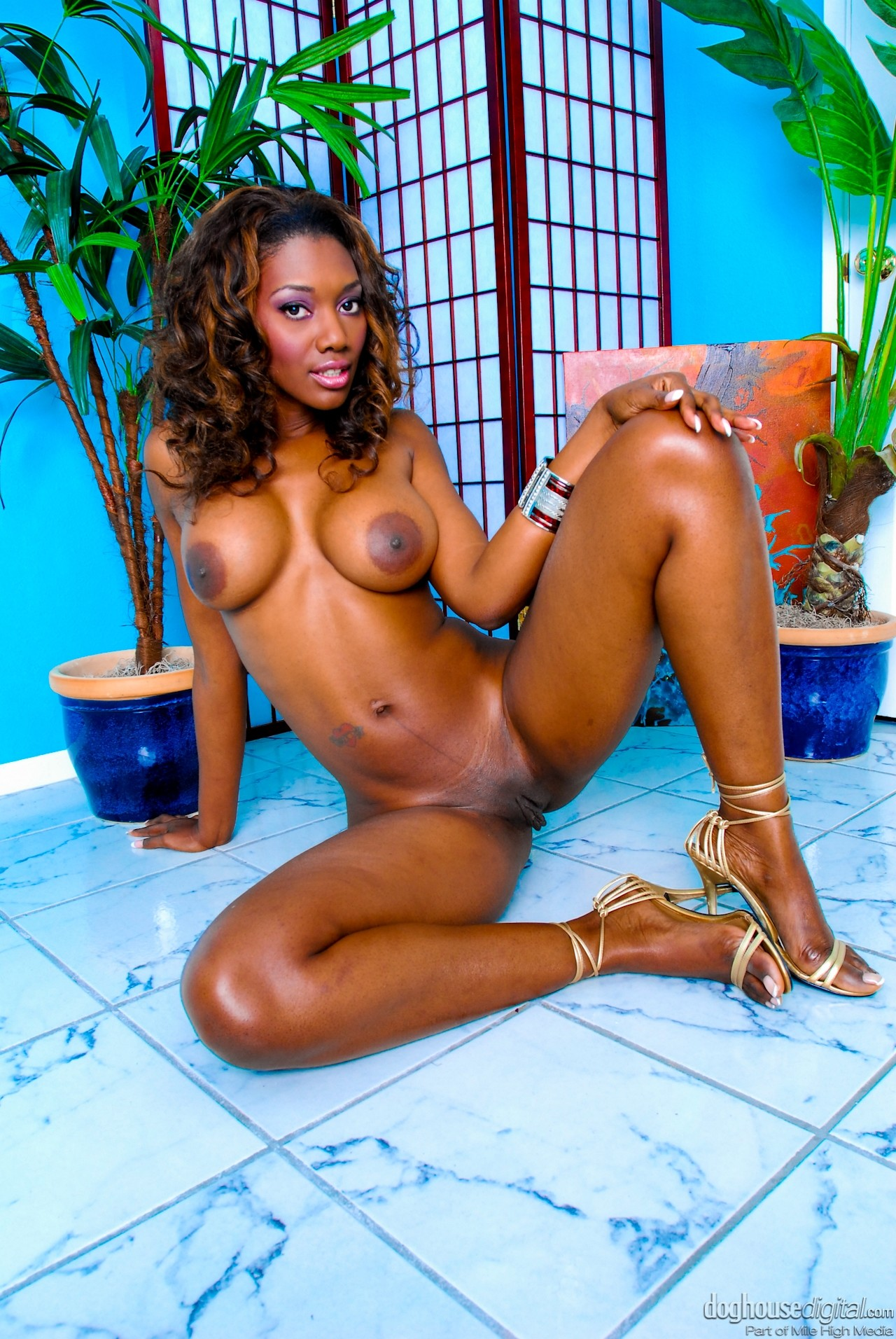 Nyomi Banxxx - White Guys Black Pies 71990-2663