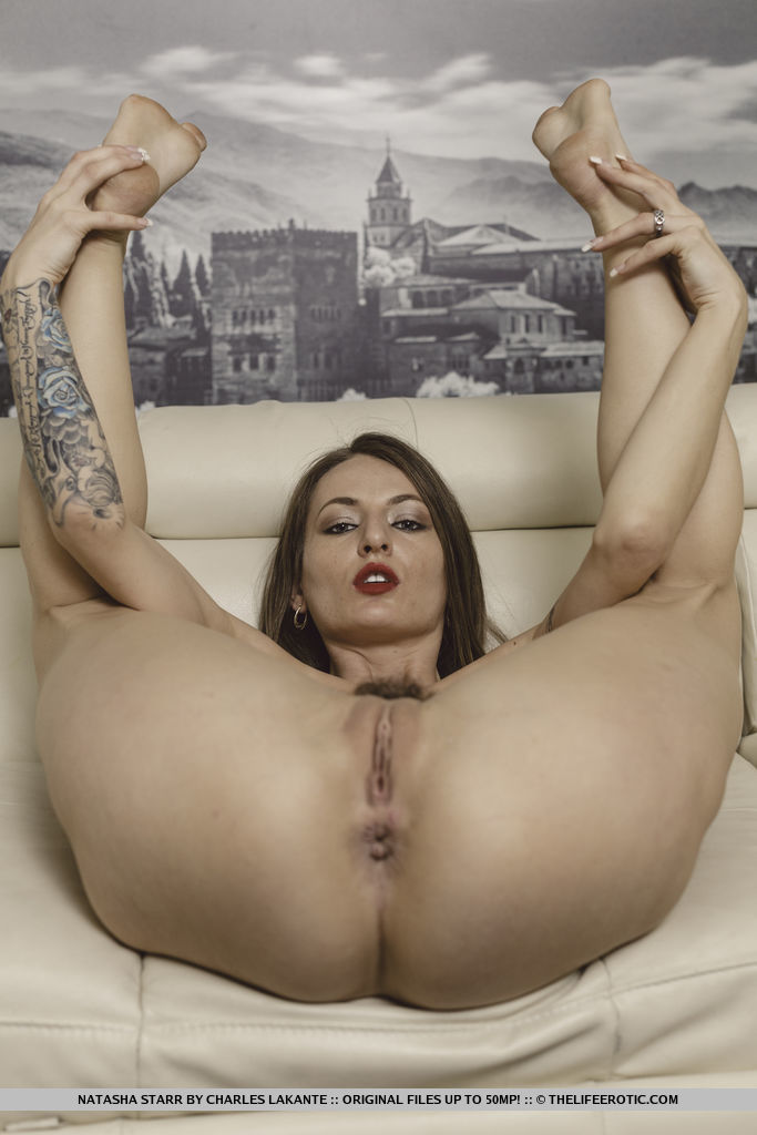 Hot tattooed sister deepthroating huge cock brutally fucked 7