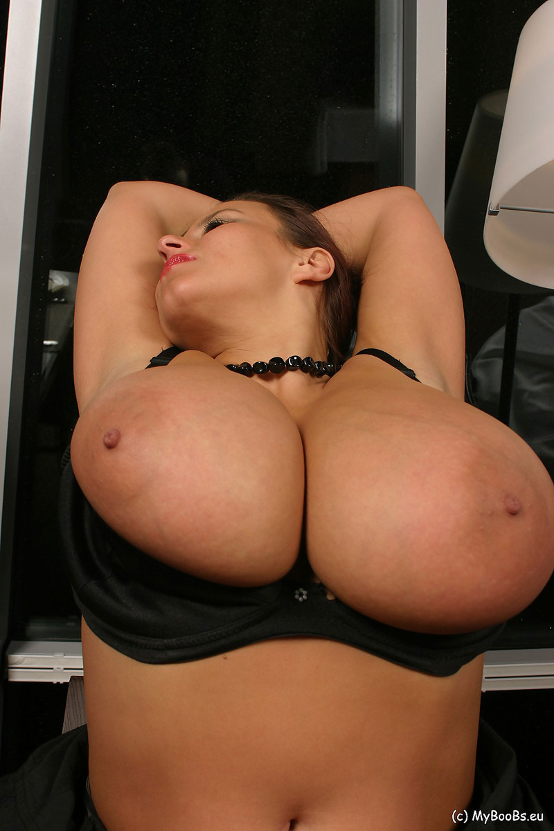 Aneta buena sucks cock
