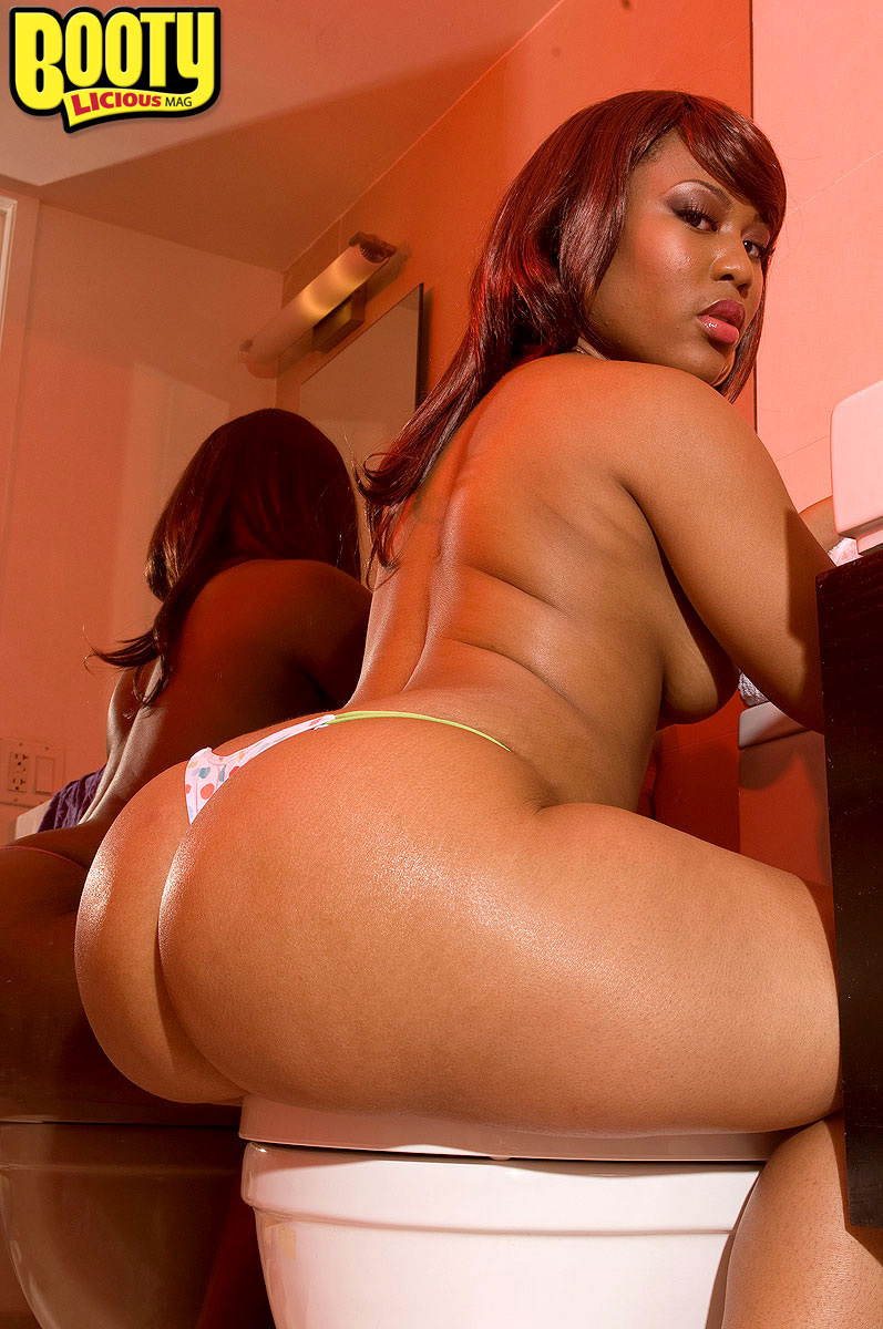 bangbros big ass girls