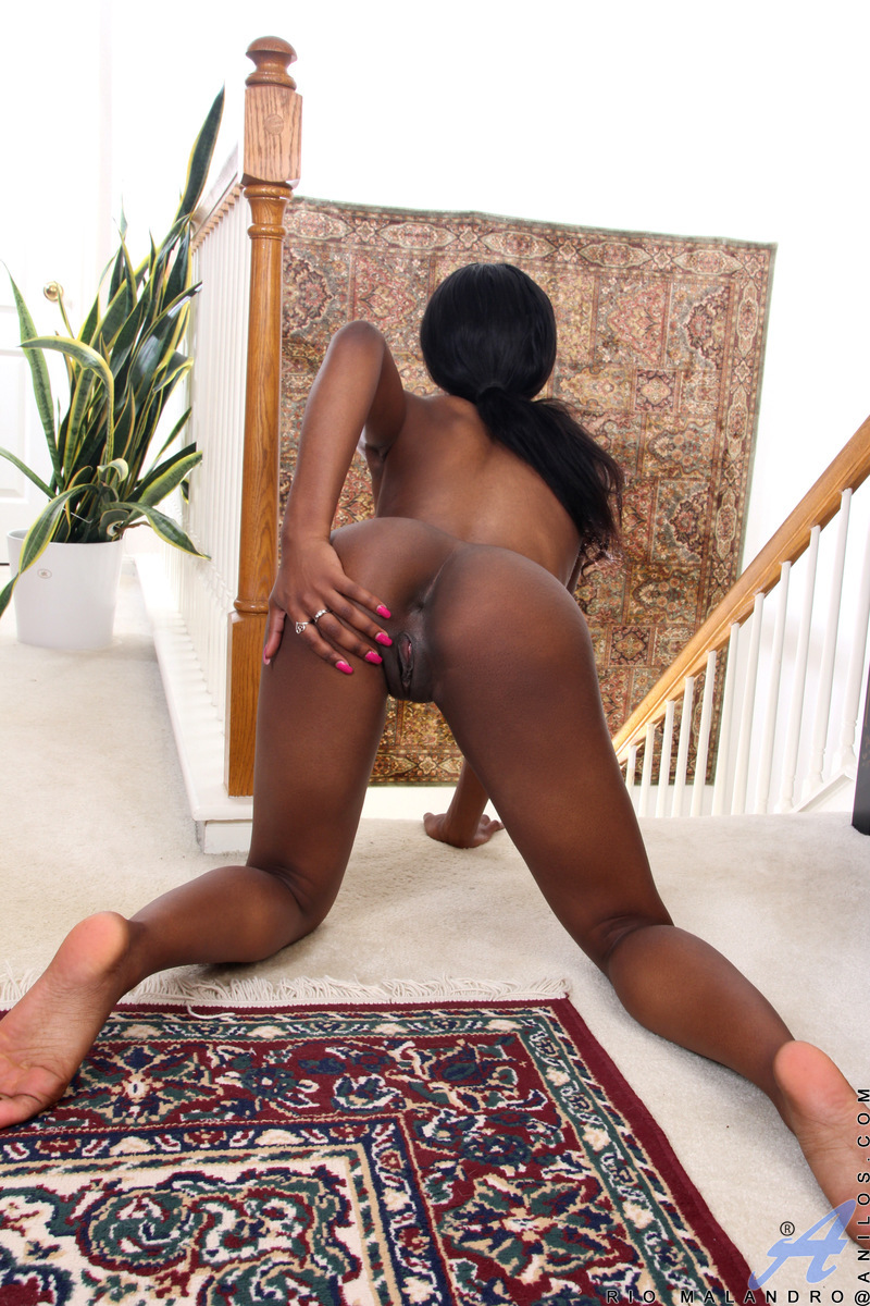 Biggest black tits in porn-3361
