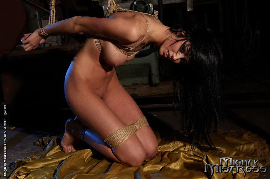 image Phoenix marie and gina valentina have one on one action