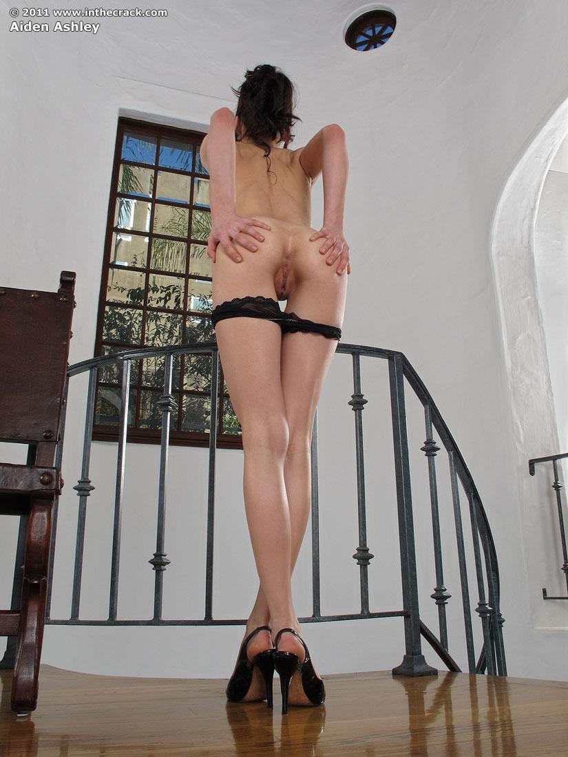 Aiden Ashley Porn aiden ashley - inthecrack 28905