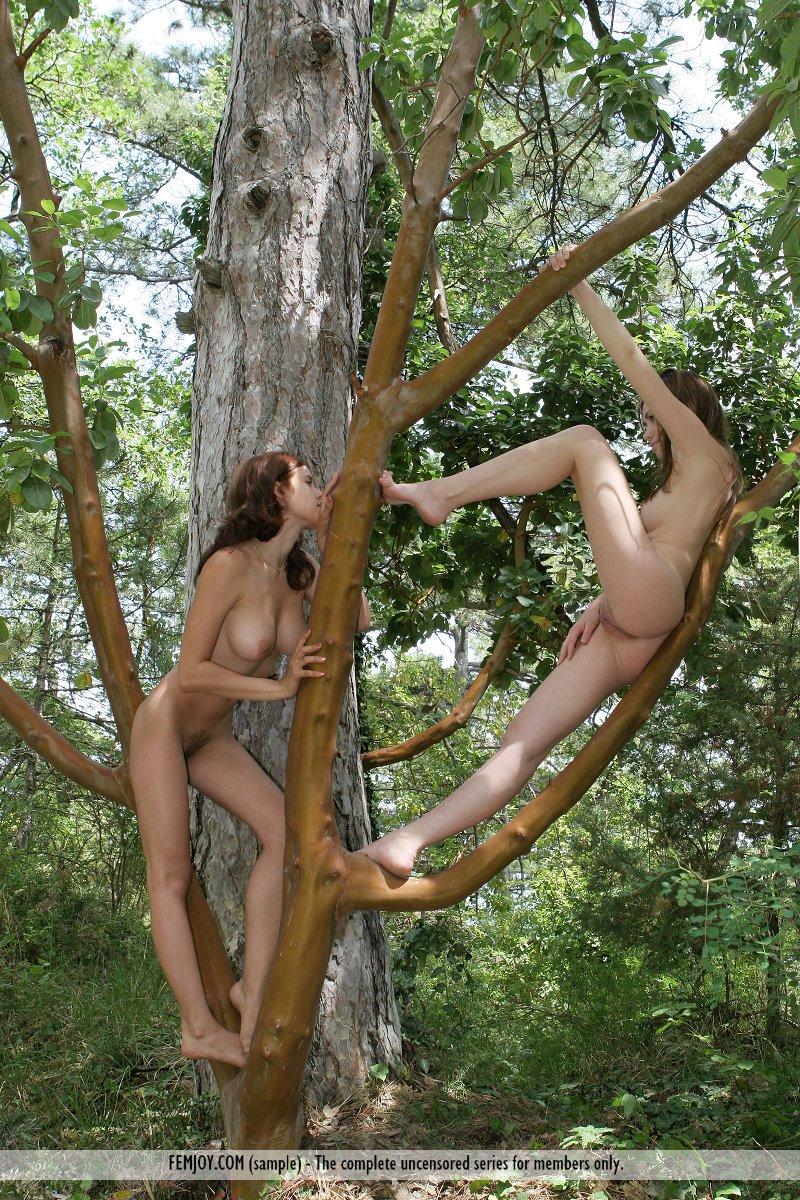 девушка с деревом порно онлайн прикосновения причинят