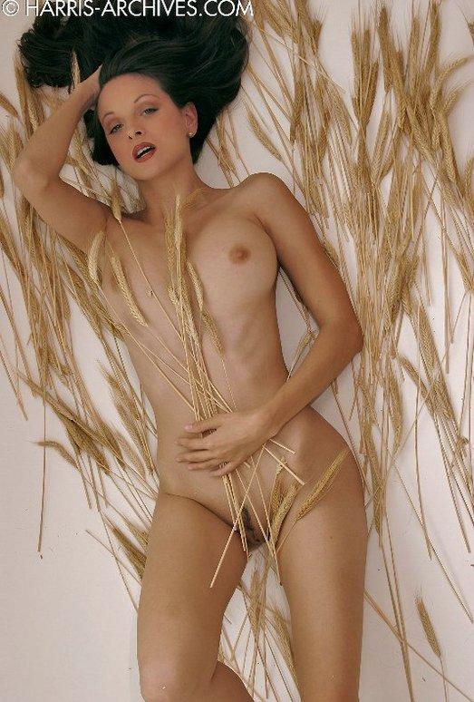 Sanja - Wheat