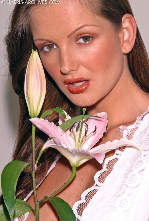 Sandra Shine - Flower
