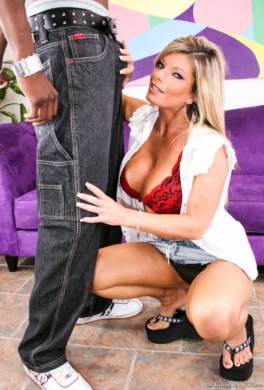 Krystal Summers - Black Bros And Milf Ho's