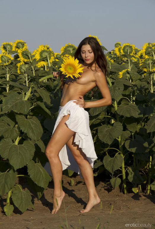 Rimma A - The Sunflower - Erotic Beauty