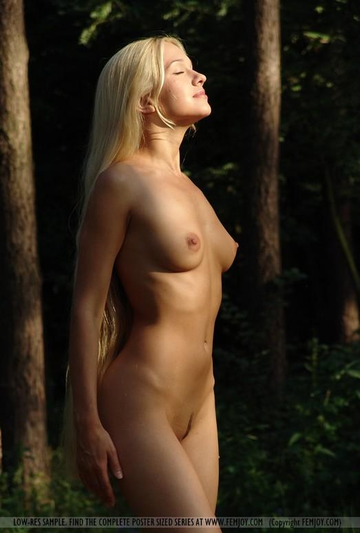 Woodworks - Desiree - Femjoy