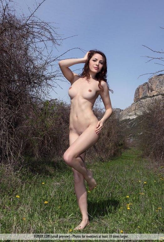 Secret Garden - Vani L.