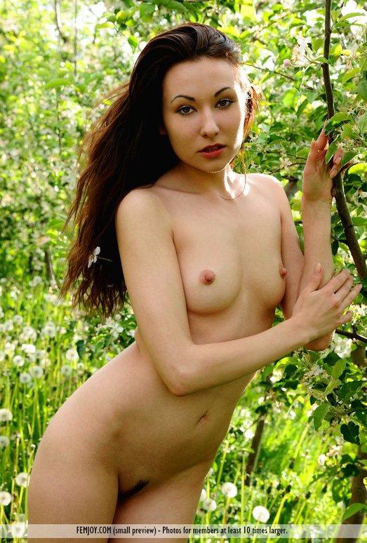 A Good Gardener - Martina D.