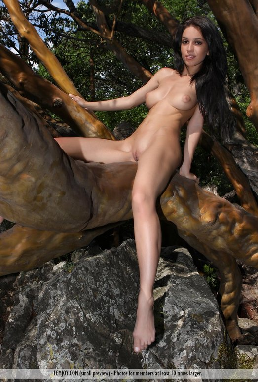 Wild Girl - Vic E. - Femjoy
