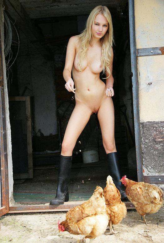 Farmer's Wife - Whitney