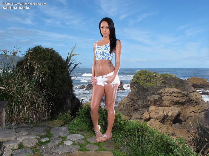 Sabrina Banks - dildoing on the beach