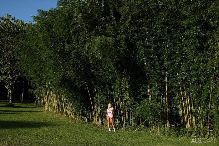 Franziska Facella - Bamboo Taboo - ALS Scan