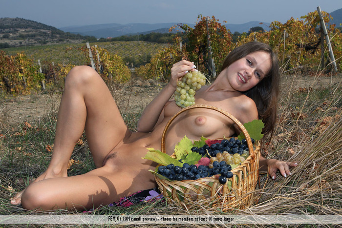 Here In My Vineyard - Lena